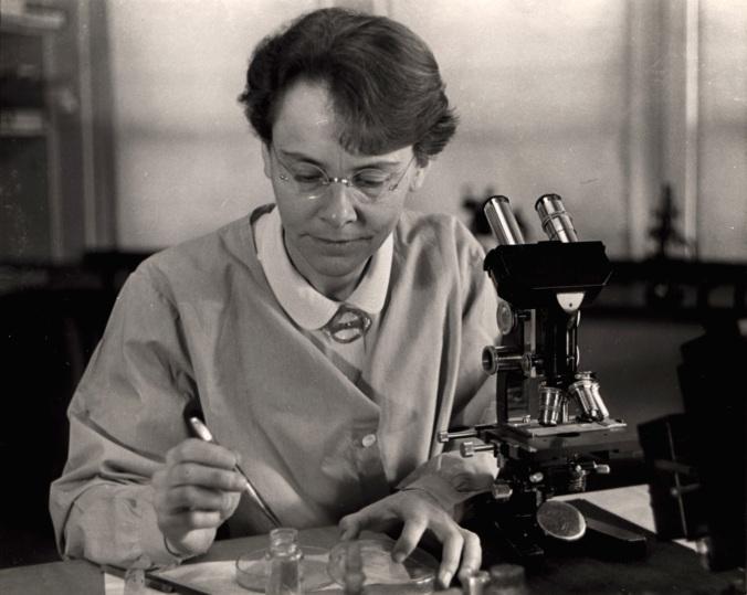 Barbara McClintock, 1902-1992